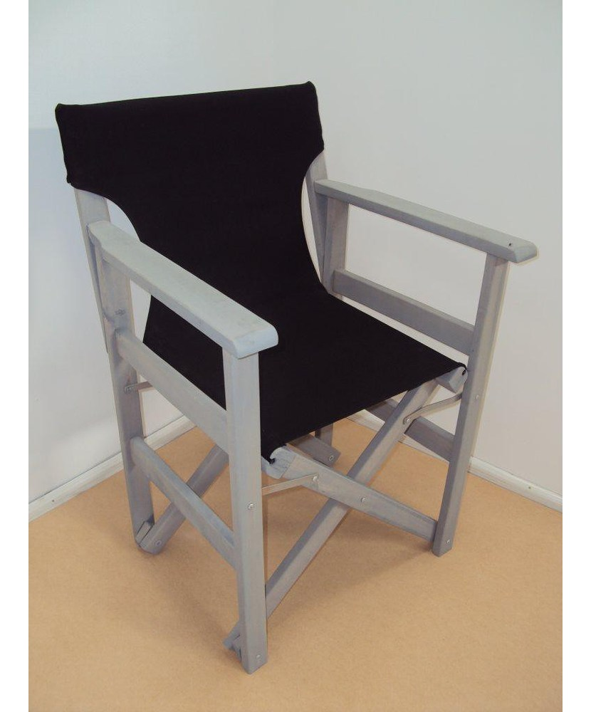 Professional Director Chair